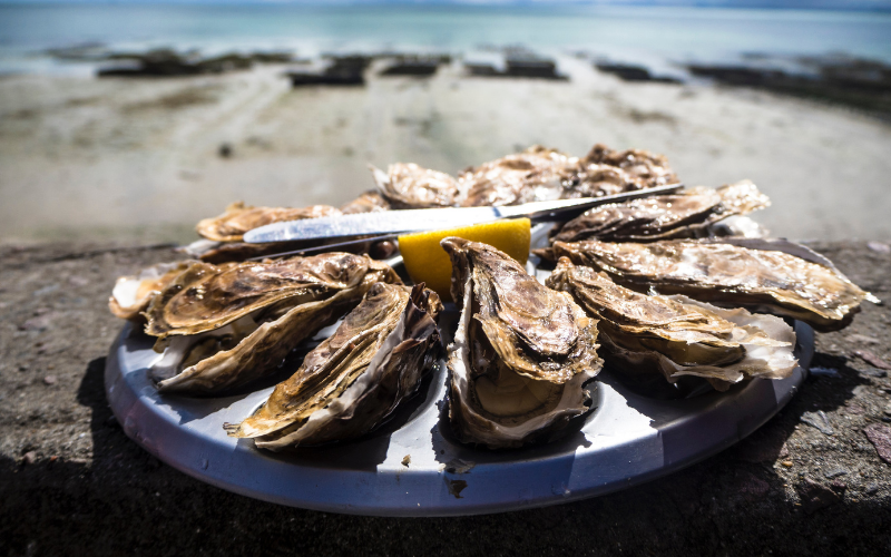 Pacific cupped oysters